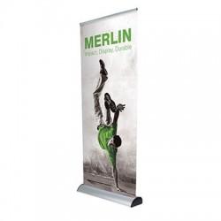 merlin_front_large